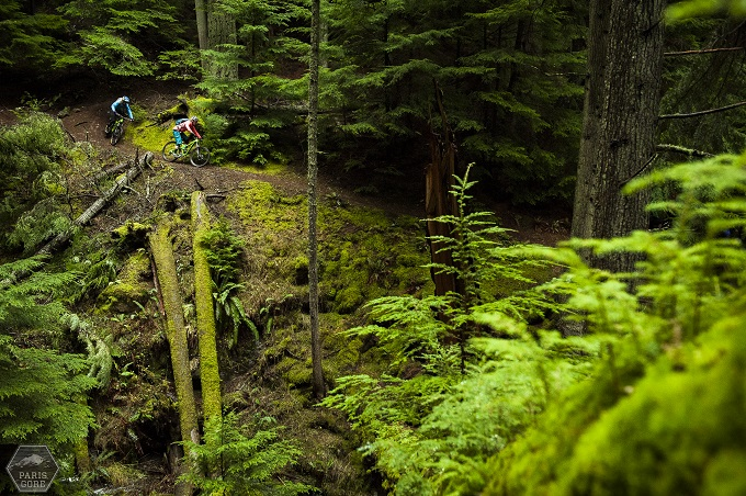 2 bikers riding through the greenery of the Olympic Peninsula forest